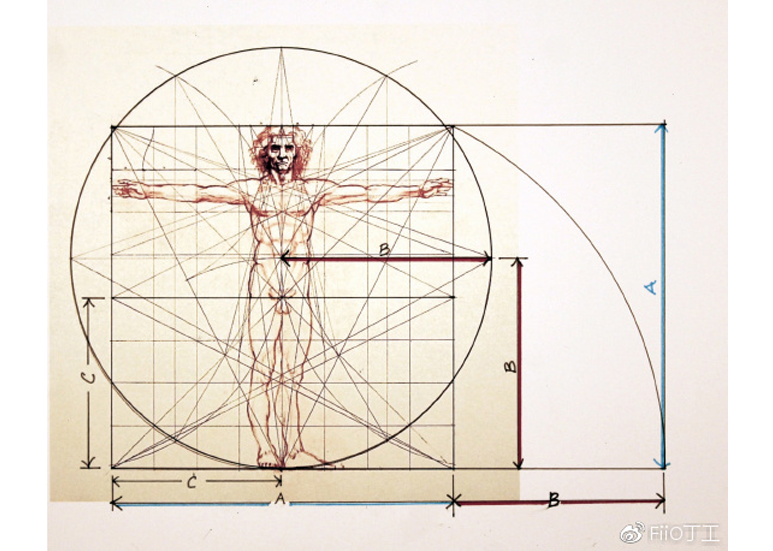 Da Vinci's golden ratio diagram