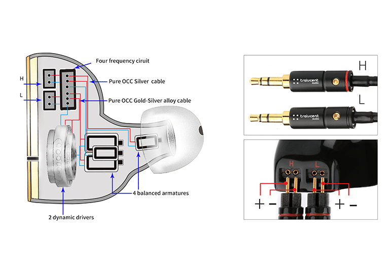 Interiors and Dual 0.78mm 2-pin configuration of Tralucent Audio Ref GEN 3